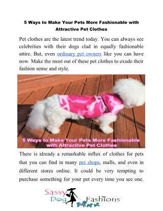 5 Ways to Make Your Pets More Fashionable with Attractive Pet Clothes