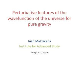 Perturbative features of the wavefunction of the universe for pure gravity