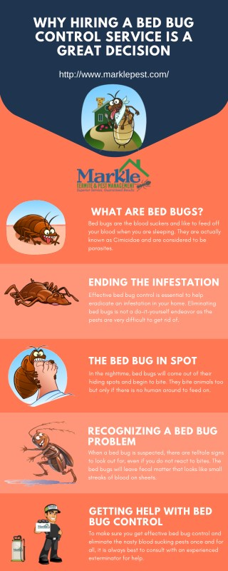 Why Hiring a Bed Bug Control Service Is a Great Decision?
