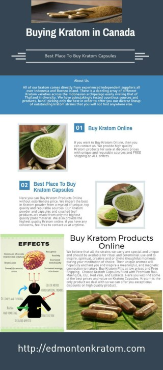 Buying Kratom in Canada At Affordable Rates