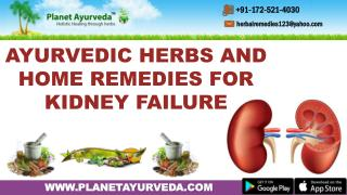 Ayurvedic Herbs and Home Remedies for Kidney Failure
