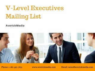 V Level Executives Mailing List