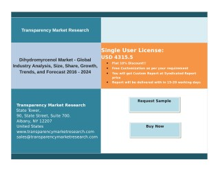 Dihydromyrcenol Market Key Growth Factors and Industry Analysis 2016-2024