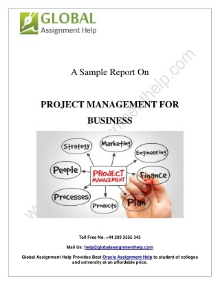Sample Report On Project Management For Business By Global Assignment Help