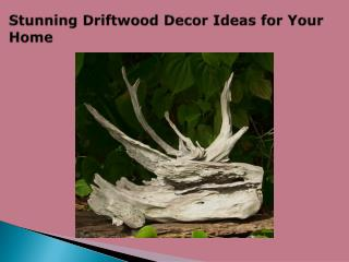 Stunning Driftwood Decor Ideas for Your Home