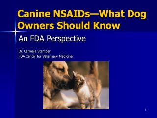 Canine NSAIDs What Dog Owners Should Know