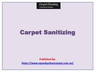 Carpet Cleaning-Carpet Sanitizing