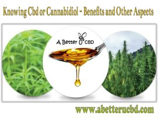 Knowing Cbd or Cannabidiol - Benefits and Other Aspects
