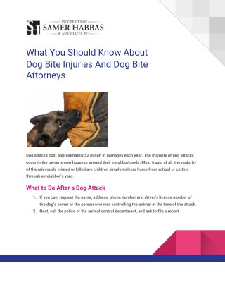 What You Should Know About  Dog Bite Injuries And Dog Bite  Attorneys