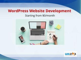 Instant Website Development | Fix WordPress Issues