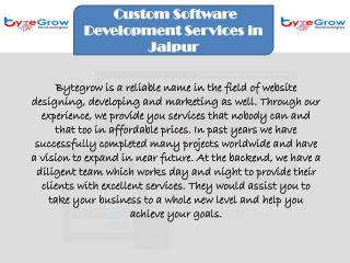 Software Development Service Provider Company