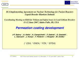 IEA Implementing Agreement on Nuclear Technology for Fusion Reactors Liquid Breeder Blankets Subtask
