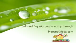 House of Medz: The Best Choice for Weed Sellers and Buyers