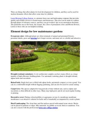 How to Design a Low-Maintenance Garden