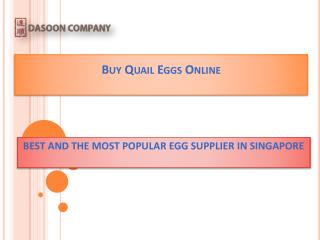 Best And The Most Popular Egg Supplier In Singapore