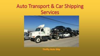 Auto Transport & Car Shipping Services