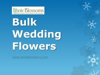 Bulk Wedding Flowers - www.wholeblossoms.com