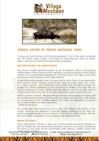 Pench Jungle Safari Booking