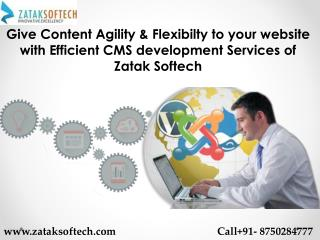 Give Content Agility & Flexibilty to your website with Efficient CMS development Services