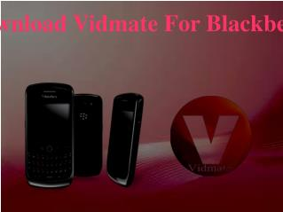 Download Vidmate For Blackberry