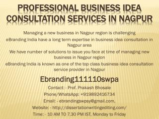 Professional Business Idea Consultation Services in Nagpur