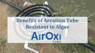 Benefits of Algae Resistant Aeration Solution - AirOxi Tube