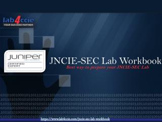 JNICE Security Lab Practical Questions