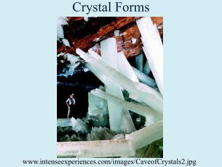 Crystal Forms