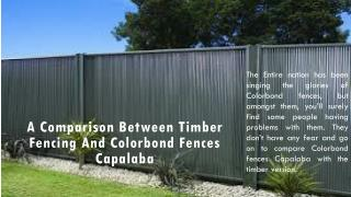 A Comparison between Timber Fencing and Colorbond Fences Capalaba