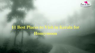 11 Best Places to Visit in Kerala for Honeymoon