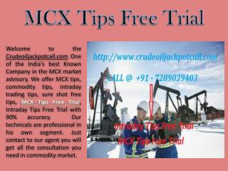 MCX Tips Free Trial, Intraday Tips Free Trial