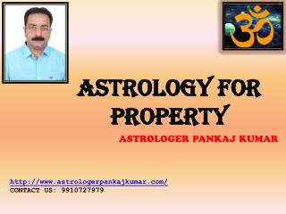Astrologer for Property