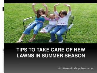 Tips To Take Care Of New Lawns In Summer Season