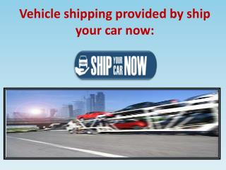 Safe and secure Vehicle shipping: