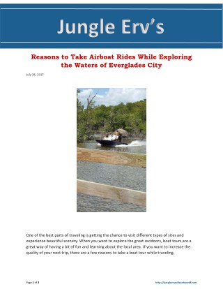 Reasons to Take Airboat Rides While Exploring the Waters of Everglades City