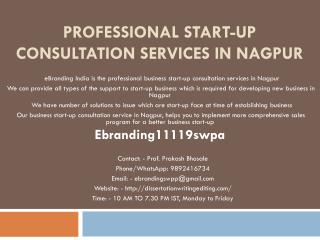 Professional Start-up Consultation Services in Nagpur