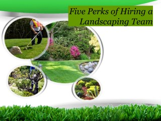 Five perks of hiring a landscaping team