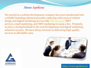 SMO Services in Jaipur