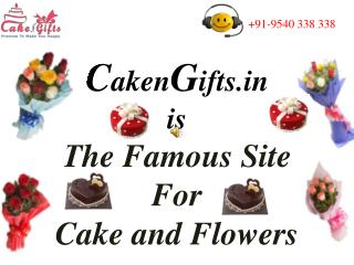 CakenGifts.in is The Famous Site For Cake and Flowers