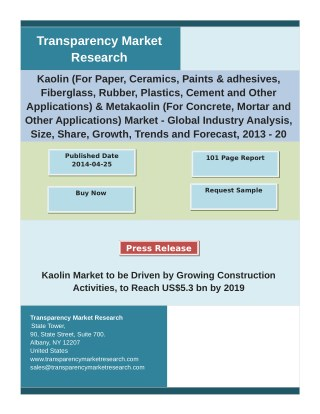 Kaolin Market Analysis and Forecast Study for 2013-2019