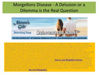 Morgellons Disease - A Delusion or a Dilemma is the Real Question