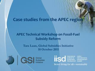 Case studies from the APEC region APEC Technical Workshop on Fossil-Fuel Subsidy Reform