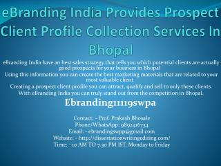 eBranding India Provides Prospect Client Profile Collection Services In Bhopal