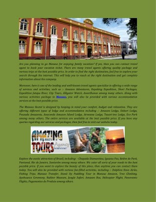 Enjoy Manaus Jungle Tours with Amazing tours agency in Brazil