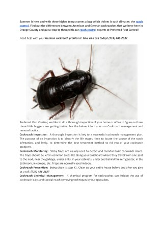 Roach control : Your Freind for Roach control in Orange County