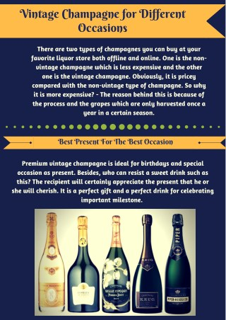 Vintage Champagne for all Ocassions | Champagne Saber