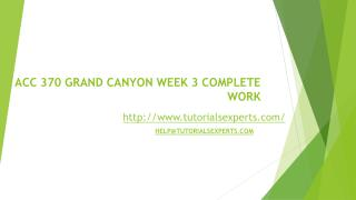 ACC 370 GRAND CANYON WEEK 3 COMPLETE WORK