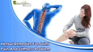 Herbal Remedies For Joint Pain And Stiffness Problem