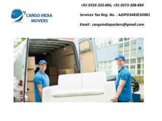 Packer Mover Service