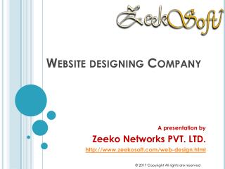 Website Designing Company in Delhi India - Best Services
